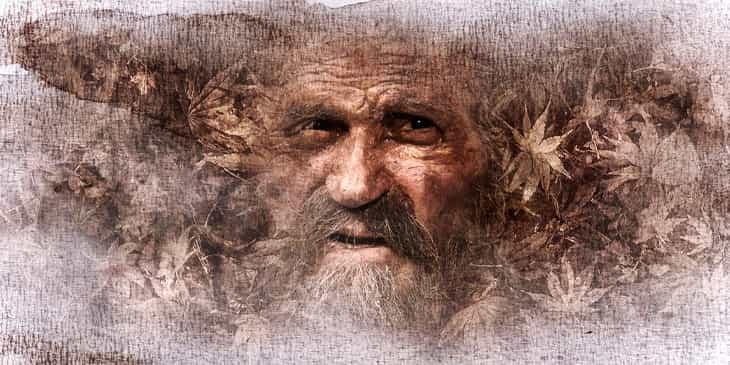 Овес повышает внимание у пожилых людей